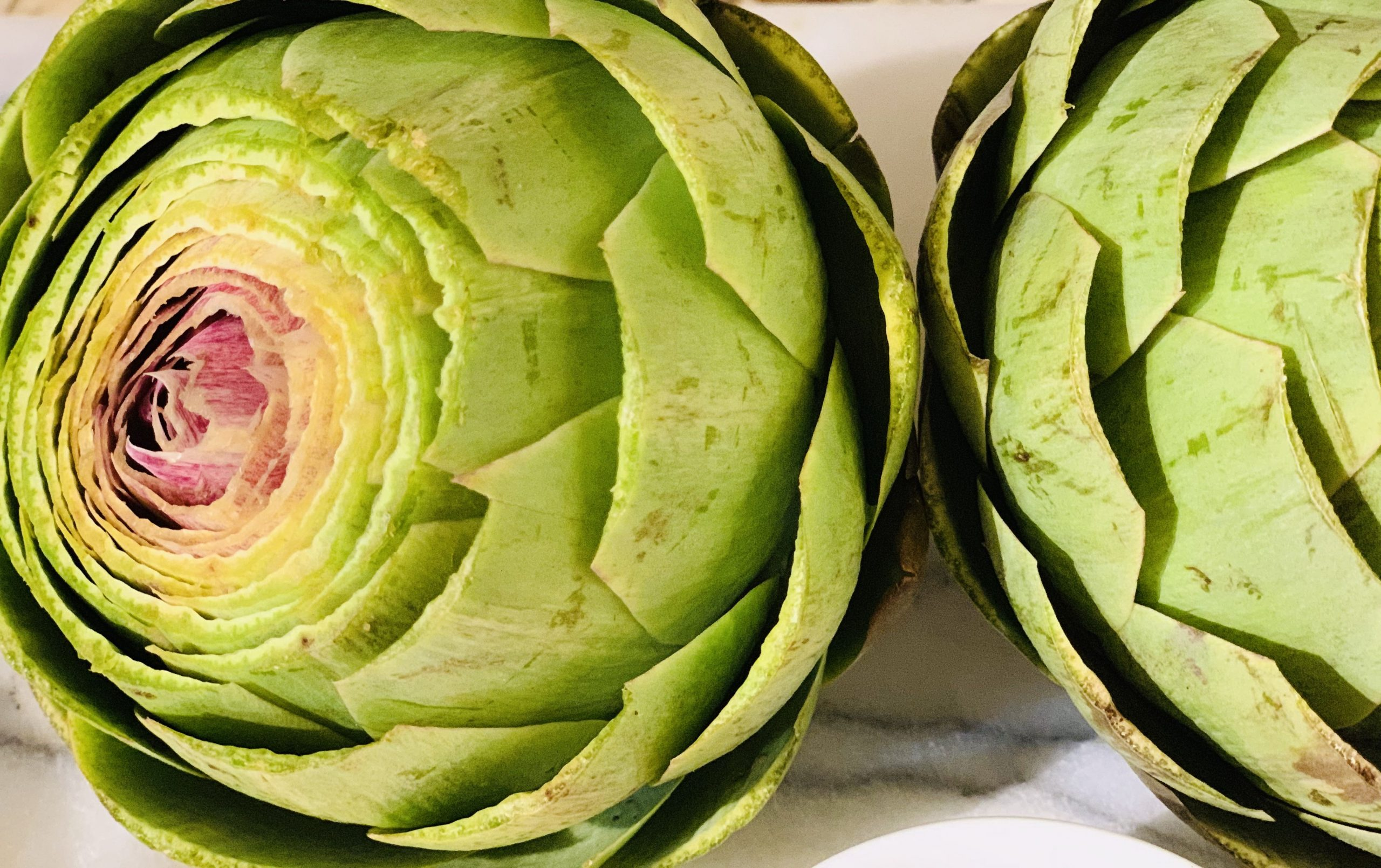 the tasty travelers, instant pot, artichokes