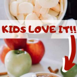 Instant Pot Applesauce (1)