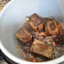 short ribs, beef, dinner, instant pot, Ninja Foodi, the tasty travelers, wine, carrots, pot roast, stew, ribs, main dish