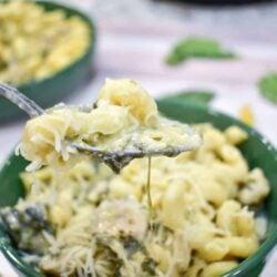 Chicken, Spinach and Artichoke Pasta-Ninja Foodi Recipe