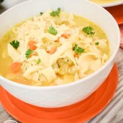 Ninja Foodi Chicken Noodle Soup