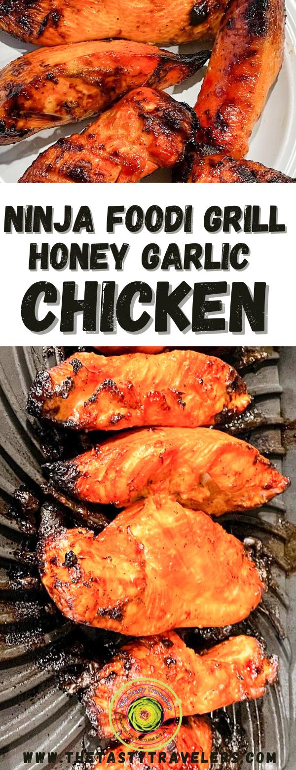 Ninja Foodi Grill Honey Garlic Chicken