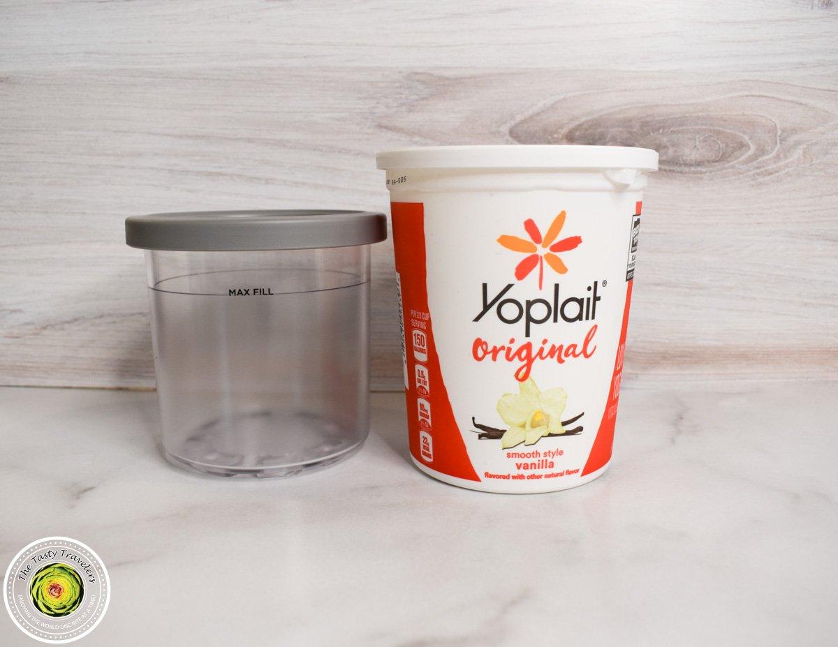 Frozen Yogurt-1