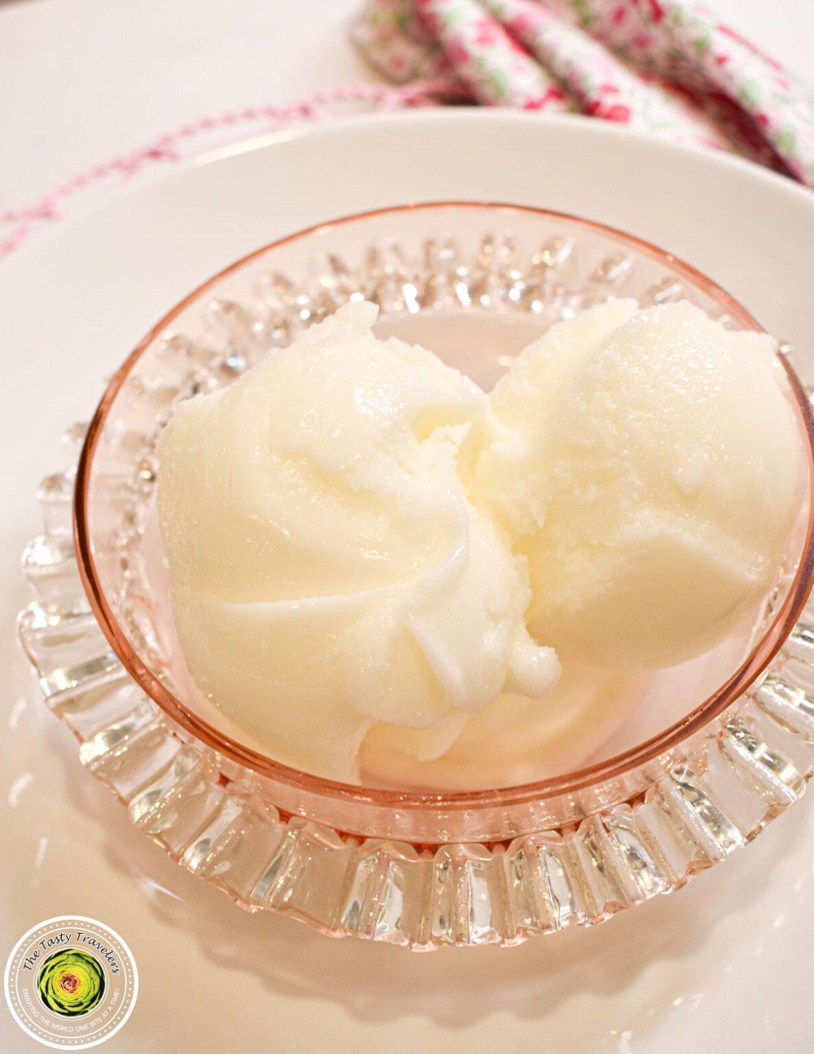 Frozen Yogurt-10