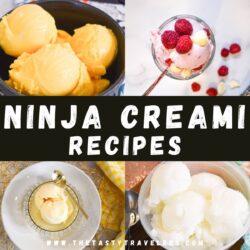 Ninja Creami Recipes